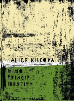 publikace Mimo princip identity