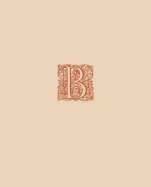 obálka publikace Justus et bonus